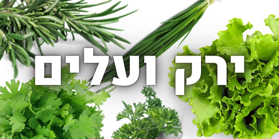ירק ועלים
